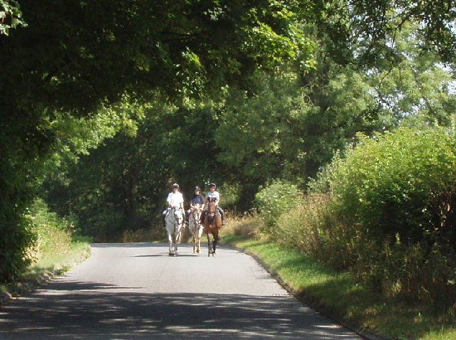 Horses and riders, near Attington