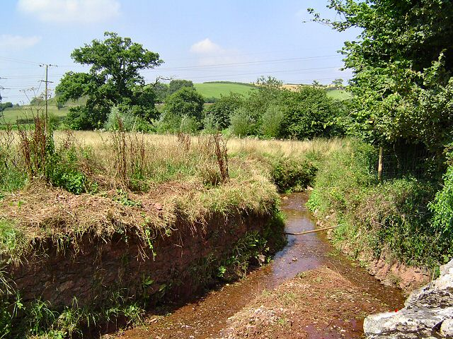 Stream at Combefishacre - South Hams