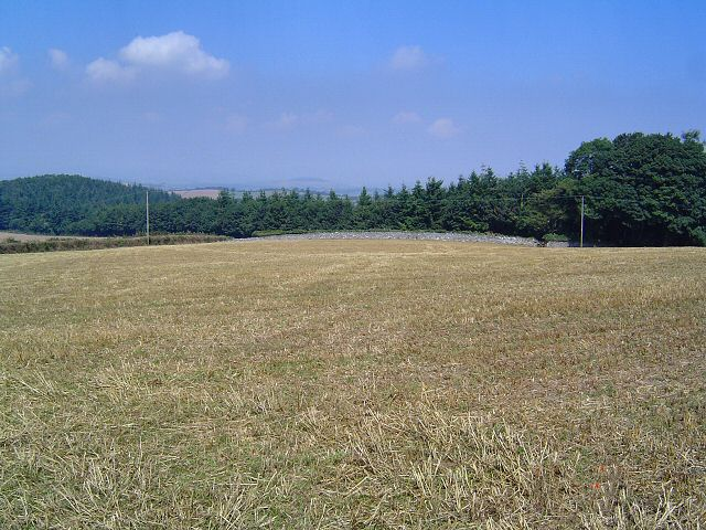 Field near Berry Pomeroy