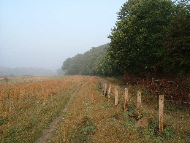 Morning Mist in Mardyke Valley
