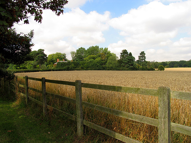 Farmland near Chieveley