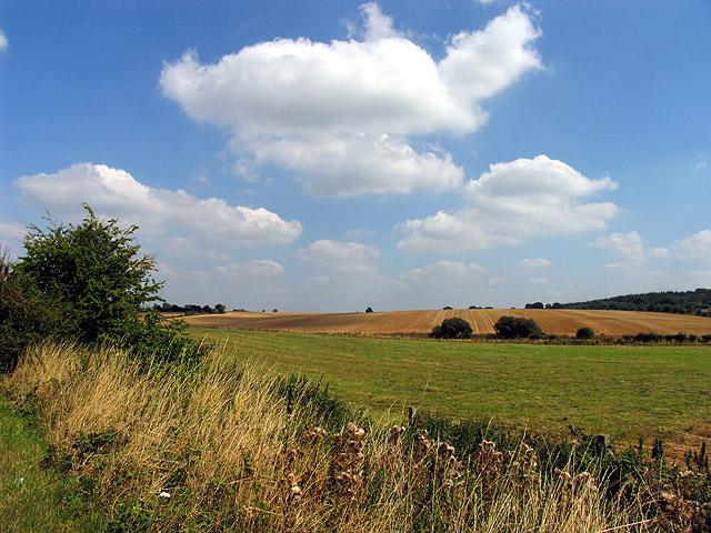Farmland near Ogdown House, Chieveley