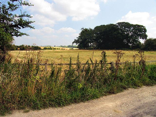 Farmland near Hazelhanger Farm