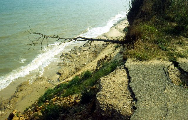 Covehithe Cliffs