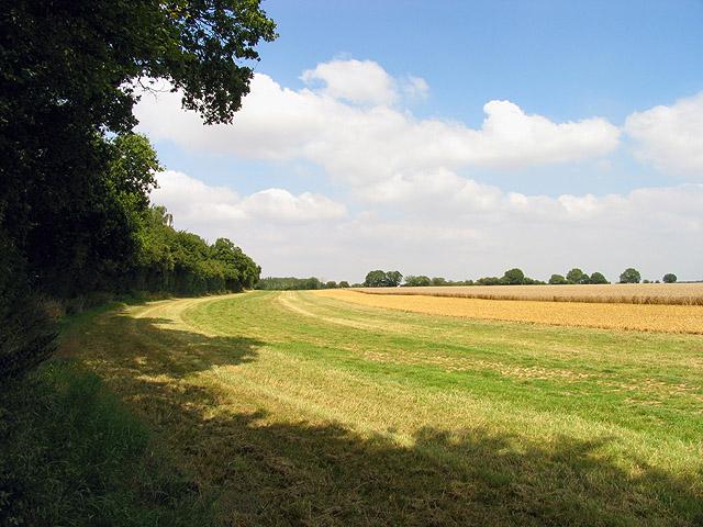 Hazelhanger Farmland