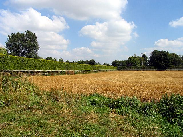 Farmland in Horsemoor