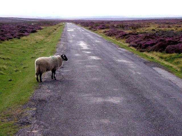 The moors road to Hutton-le-Hole