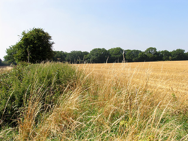 Farmland near Stanmore