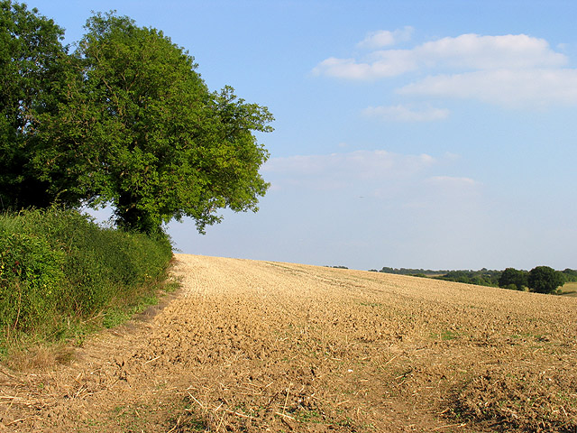 Ploughed Land along Sparrow Hill
