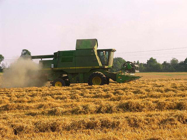 Harvesting at Brightwalton Holt