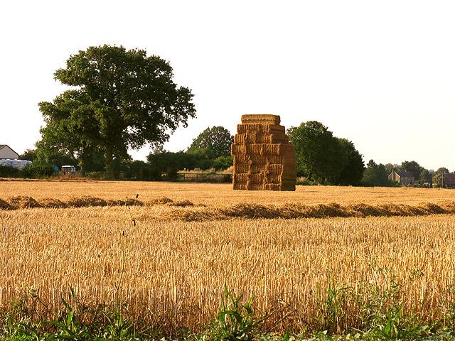 Farmland near Leckhampstead