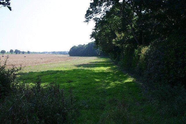 Icknield Way at Kentford