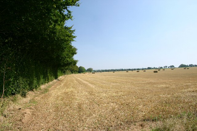 Fields alongside the A14