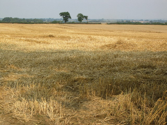 Harvested field near Ragdale, Leicestershire
