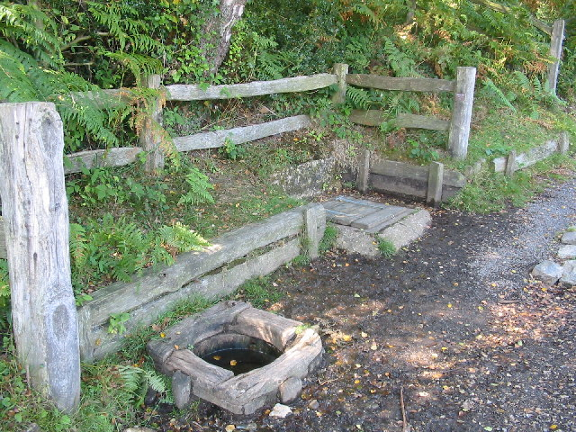 Abbots Well near Frogham in the New Forest