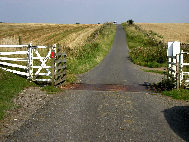 Cattle grid on the road to Levisham