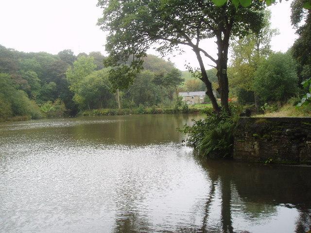 Doctor Dam, Norden near Rochdale, Lancashire