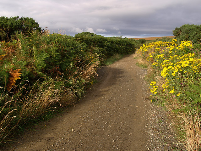 Lhergycolvine Road.  Isle of Man.