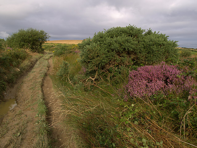 Lhergycolvine Road.   Isle of Man.