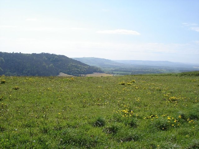 View to the west from Wolstonbury Hill