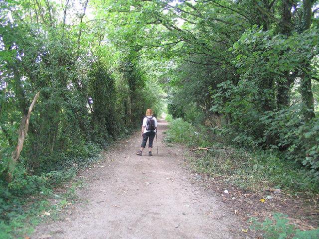 Swillington Park