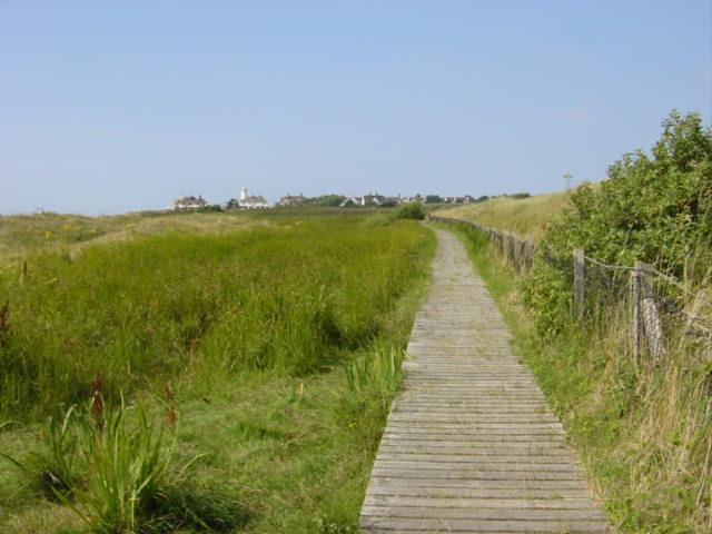 Boardwalk at  nature reserve, Hoylake
