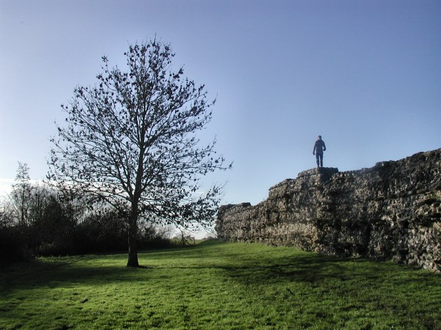 The wall of the Roman city of Calleva