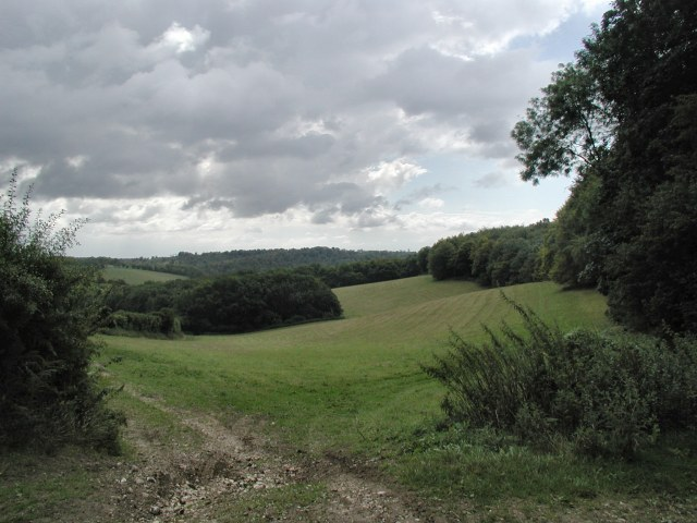Fields at the edge of Hanger wood