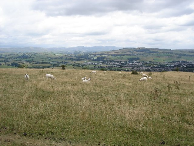View to the east over Kendal from Cunswick Fell