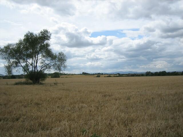Ryden Farm, Charlton