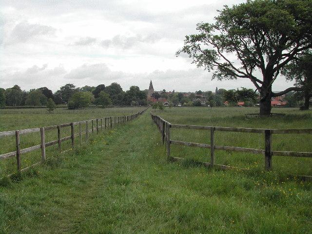 Farnsfield Meadows