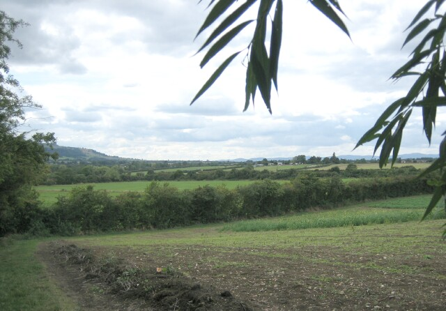 Yessell Farm, Charlton