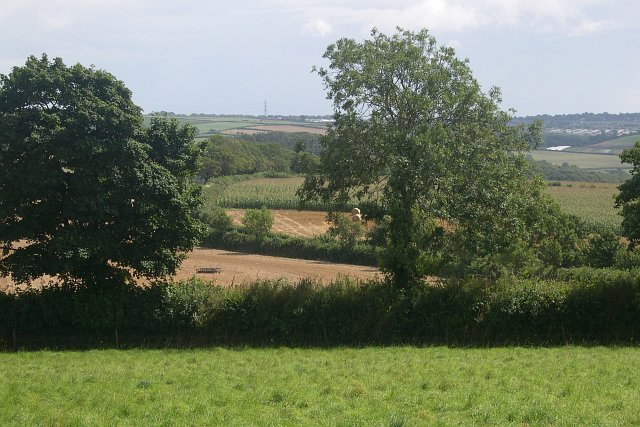Mixed agriculture near Hole Farm