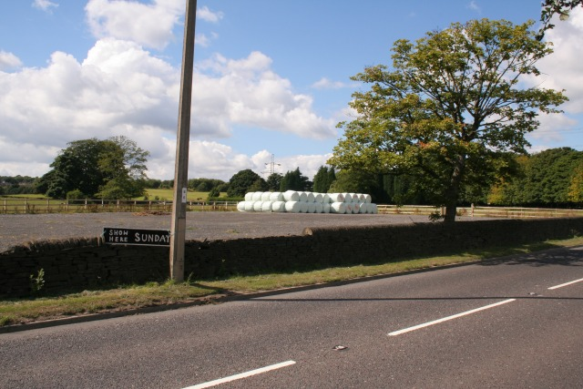 Coley Equestrian Centre