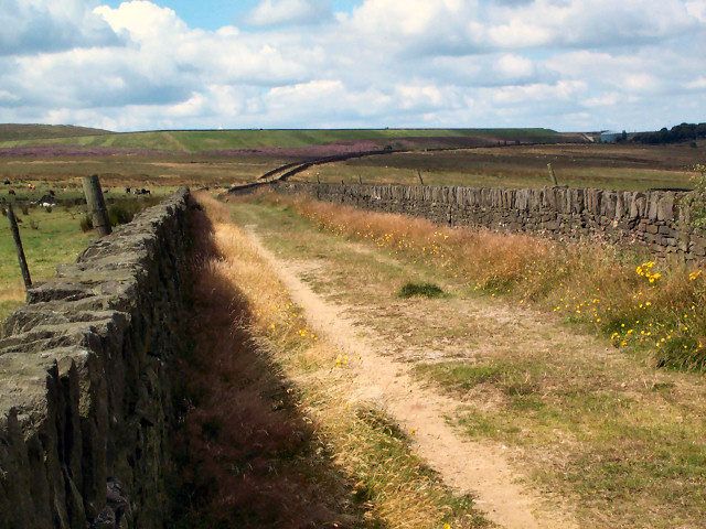Black Edge Lane, Thornton Moor