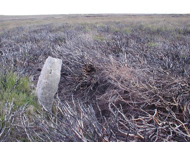 Standing Stone, High Moor