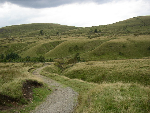 Track and Curvy Ridges, Wardle