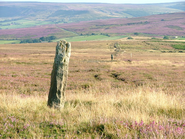 Boundary Stone, Brown Hill