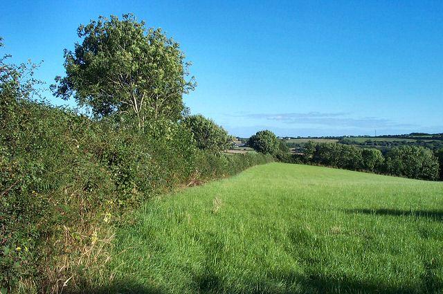 Fields near Curtisknowle