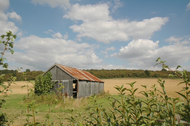 Old corrugated iron shed
