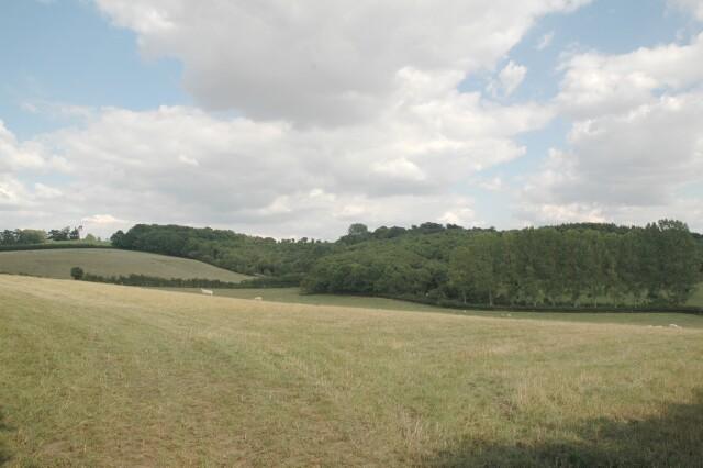 Yeald Wood