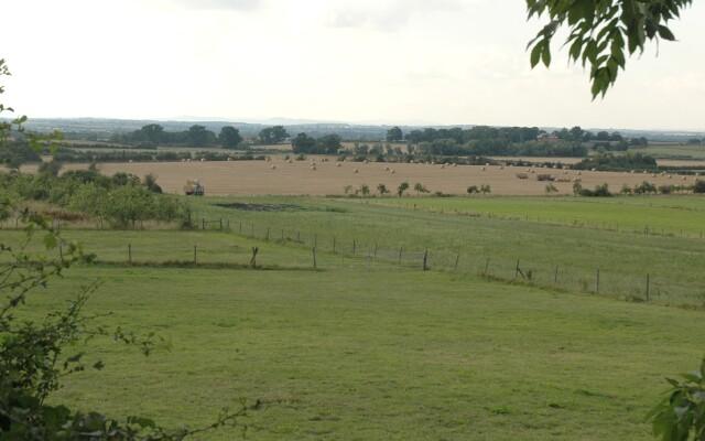 Badger's Hill