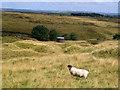 SE0533 : Air Shaft at Thornton Moor Denholme by Mick Melvin