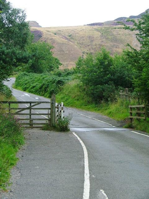 Cattle Grid, Alum House Lane