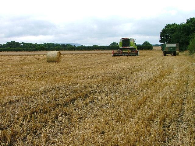 Harvestor Resting, Hunger Hill Fields