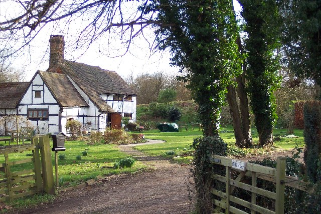Pond bay at Ewood, near Newdigate, Surrey