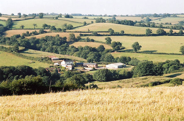 Silverton: view to Higher Brithayes, Butterleigh