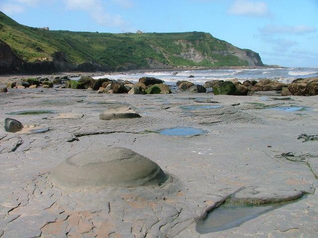 Nodules in the Mudstone Shore of Port Mulgrave