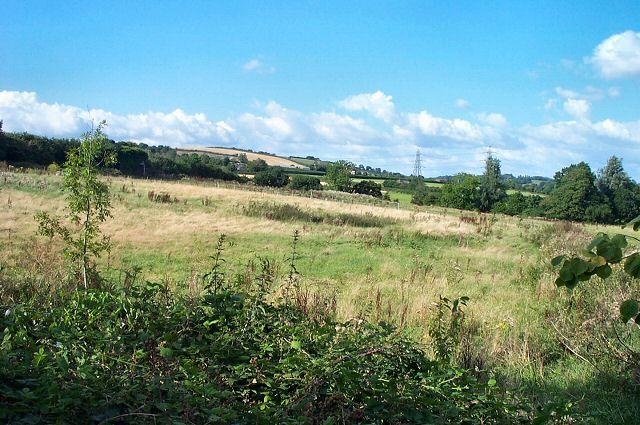 Countryside near Buckyette