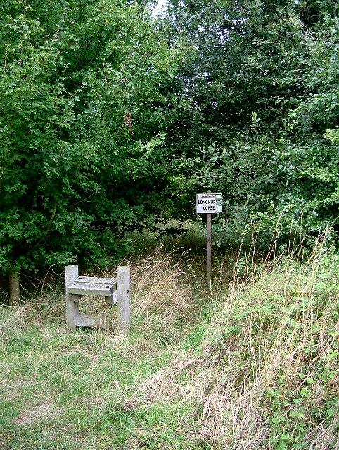 A Seat in Longhurst Copse
